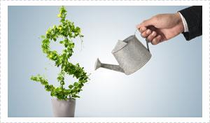 Home Loan Broker - Gold Coast - Brisbane - Giving Water in Tree